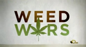 Bbc фильмы про марихуану запах от конопли
