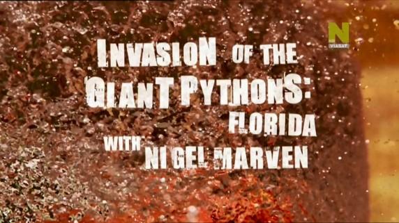 Вторжение гигантских питонов / Invasion Of The Giant Pythons: Florida With