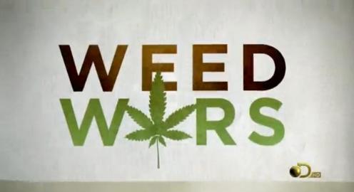 Дискавери марихуана 7 граммов конопли