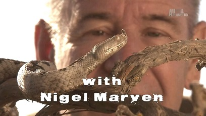 Самые опасные змеи с Найджелом Марвином 5 серия. Малайзия / Ten Deadliest Snakes with Nigel Marven (2015)