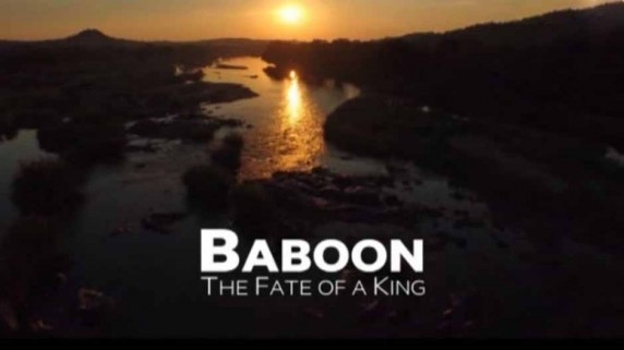 Король Бабуинов 3 серия / Baboon The Fate of a King (2015)