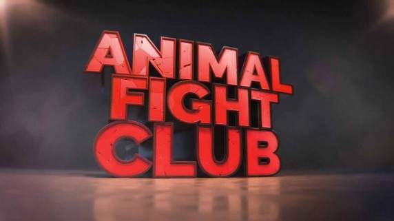 Бойцовский клуб для животных Лучшее: Быстрый и мертвый / Animal Fight Club (2018)