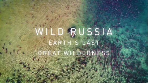 Дикая природа России 2 сезон 3 серия. Холодное сердце Сибири / Wild Russia: Earth's Last Great Wilderness (2018)