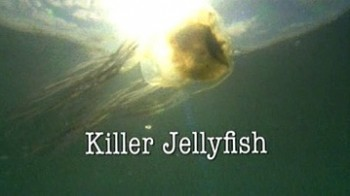 Медуза-Убийца / Killer Jellyfish (2006)