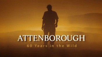 Аттенборо: 60 лет с дикой природой 3 серия. Наша хрупкая планета / Attenborough: 60 Years in the Wild (2012)