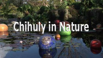 Работы Дейла Чихули / HD Moods - Chihuly in Nature (2008)