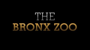 Зоопарк 01 серия / The Bronx Zoo (2016)