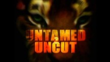 Дикие и Опасные 5 серия. Опасные игры с аллигаторами / Untamed and Uncut (2010)