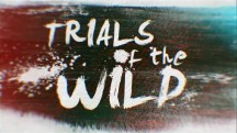 Испытания в дикой природе 9 серия. Бойцы, рожденные на воле / Trials of the Wild (2018)