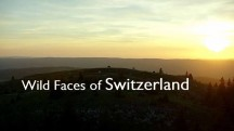 Дикая Швейцария 1 серия / Wild Faces of Switzerland (2018)