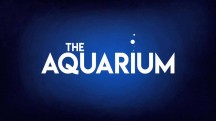 Океанариум 1 серия / The Aquarium (2019)