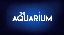Океанариум 3 серия / The Aquarium (2019)