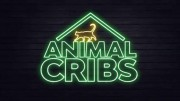 Дома для животных 2 сезон 04 серия. Пляжное бунгало для кролика / Animal Cribs (2019)